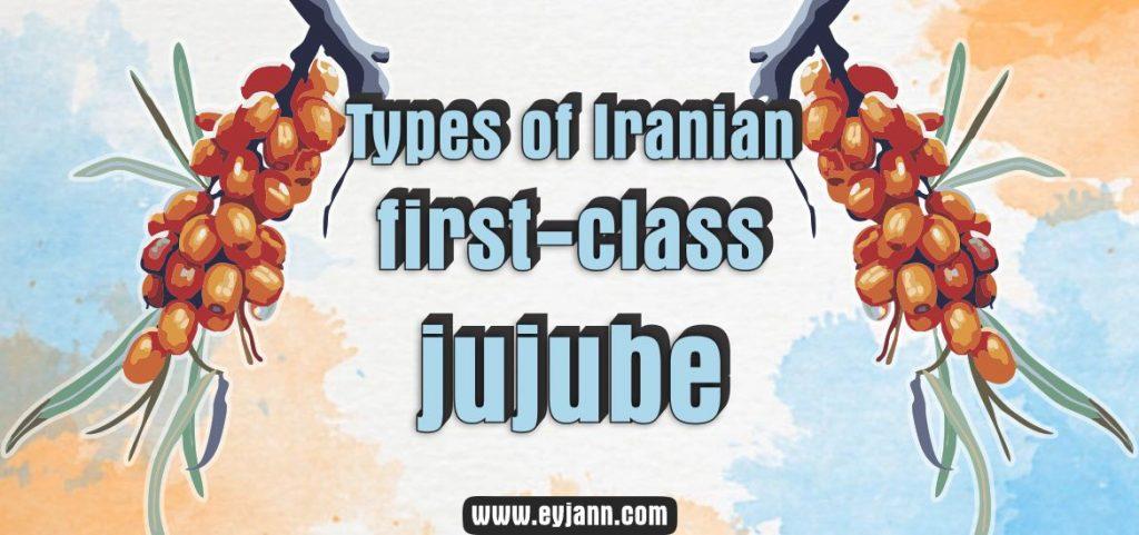 Iranian jujube