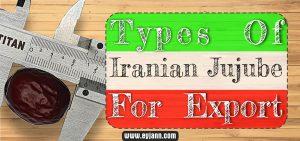 wholesale jujube from Iran