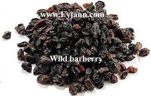 Iranian wild barberry